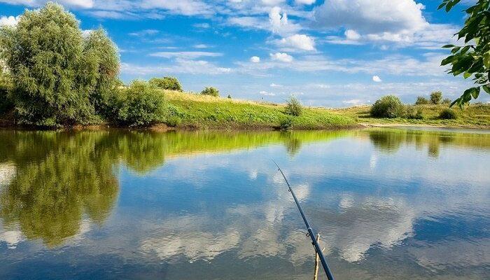 Летняя рыбалка: особенности и подготовка