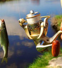 Запрет на рыбалку в Украине 2017