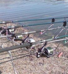 Виды рыболовных удочек и их выбор в зависимости от способа рыбалки