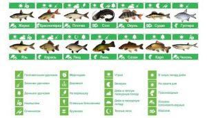 Полезные таблицы для рыбаков
