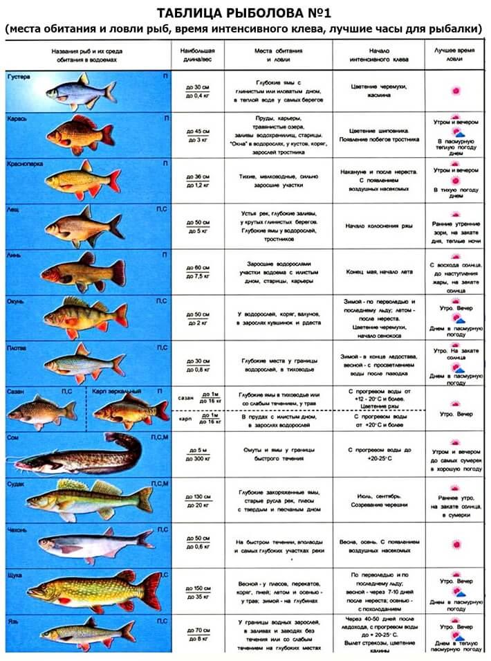 Таблица рыбака: часть 1