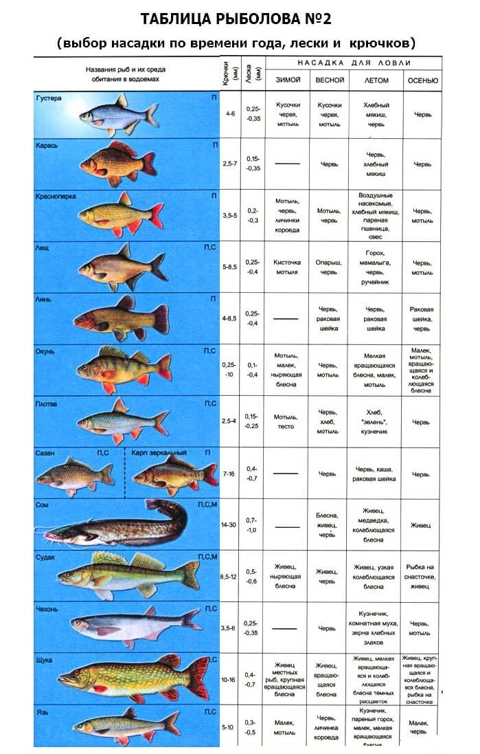 Таблица рыбака: часть 2