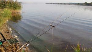 Фидерная ловля карася на ставке в Украине