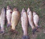 Рыбалка в Хмельницкой области: самые популярные озера