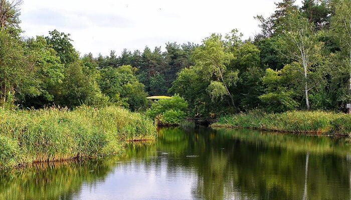 Рыбалка в Днепропетровской области: где, что и как ловить
