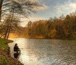 Плотва осенью на поплавок