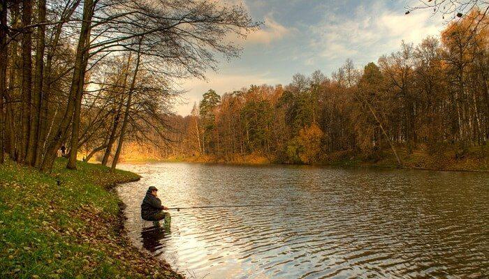 Картинки по запросу фото поплавок осенью