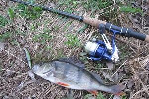 Спиннинговая ловля в Украине осенью