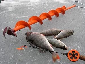 Ледобур для зимней рыбалки и улов
