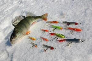 Зимняя рыбалка в Украине на окуня