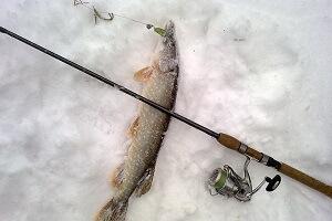Зимняя рыбалка в Украине на щуку