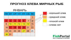 календарь клева рыбы павлодар