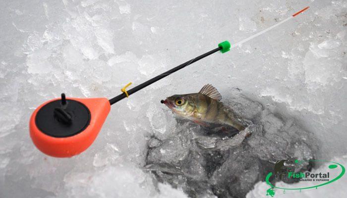 Способы ловли рыбы зимой: полезная инфографика