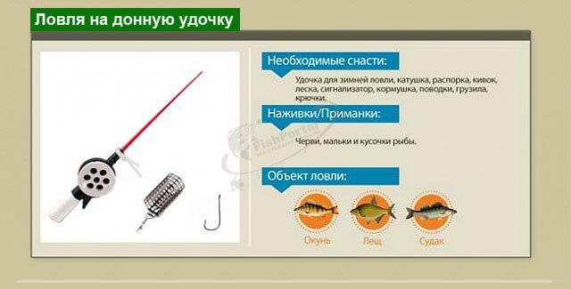 Способы ловли рыбы зимой инфографика на донную удочку