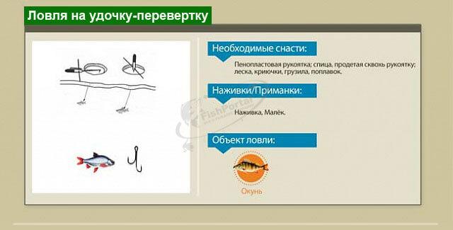 Способы ловли рыбы зимой инфографика ловля на удочку-перевертку