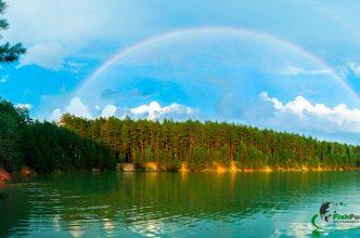 Водоемы Украины: увлекательный кроссворд
