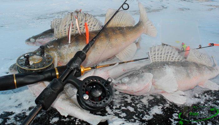 Календарь рыбака на декабрь 2017 года