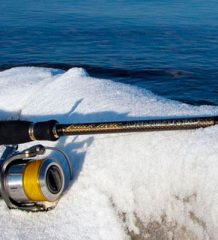 Календарь рыболова на неделю 27 ноября - 3 декабря: что и как ловить