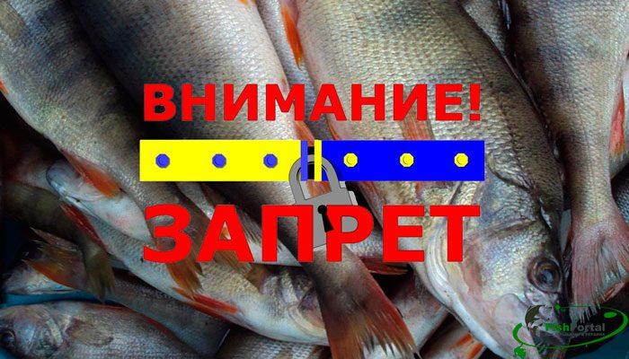 Нерестовый запрет на рыбалку 2018 в Украине по областям: наказы