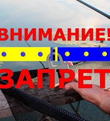 Нерестовый запрет в Тернопольской области в 2018 году