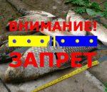 запрет на рыбалку в Черниговской обл