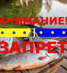 Нерестовый запрет на рыбалку в Черновицкой обл. весной 2018 года