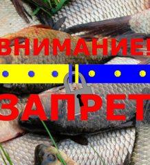 Нерестовый запрет на рыбалку в Донецкой области 2018