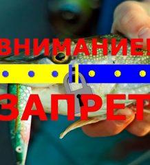 Нерестовый запрет на рыбалку в Ивано-Франковской обл. весной 2018 году