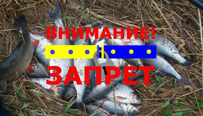 Нерестовый запрет на рыбалку в Кировоградской области весной 2018