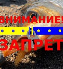 Нерестовый запрет на рыбалку в Волынской обл. весной 2018 года