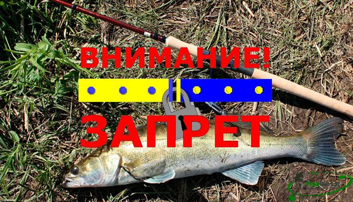 Нерестовый запрет на рыбалку в Харьковской области в 2018 году