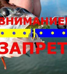 Нерестовый запрет на рыбалку в Херсонской области весной 2018 года