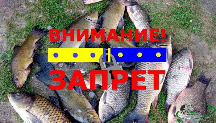 Нерестовый запрет на рыбалку 2018 в Житомирской области