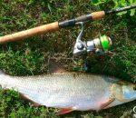 Календарь рыбака на неделю 11-17 июня: что, где, когда и как ловить