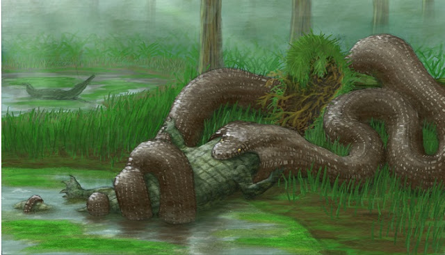 Гигантская змея титанобоа фото