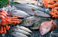 Названа самая полезна рыба в мире...