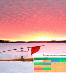 Календарь рыбака на январь 2019: прогноз клева рыбы по дням фото изображение